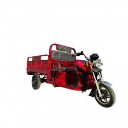 Tricicletă electrică...
